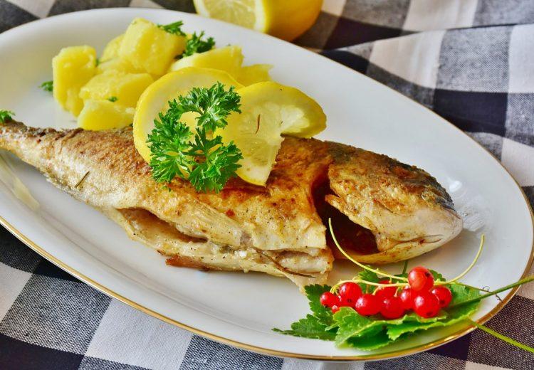 fish-3483465_960_720